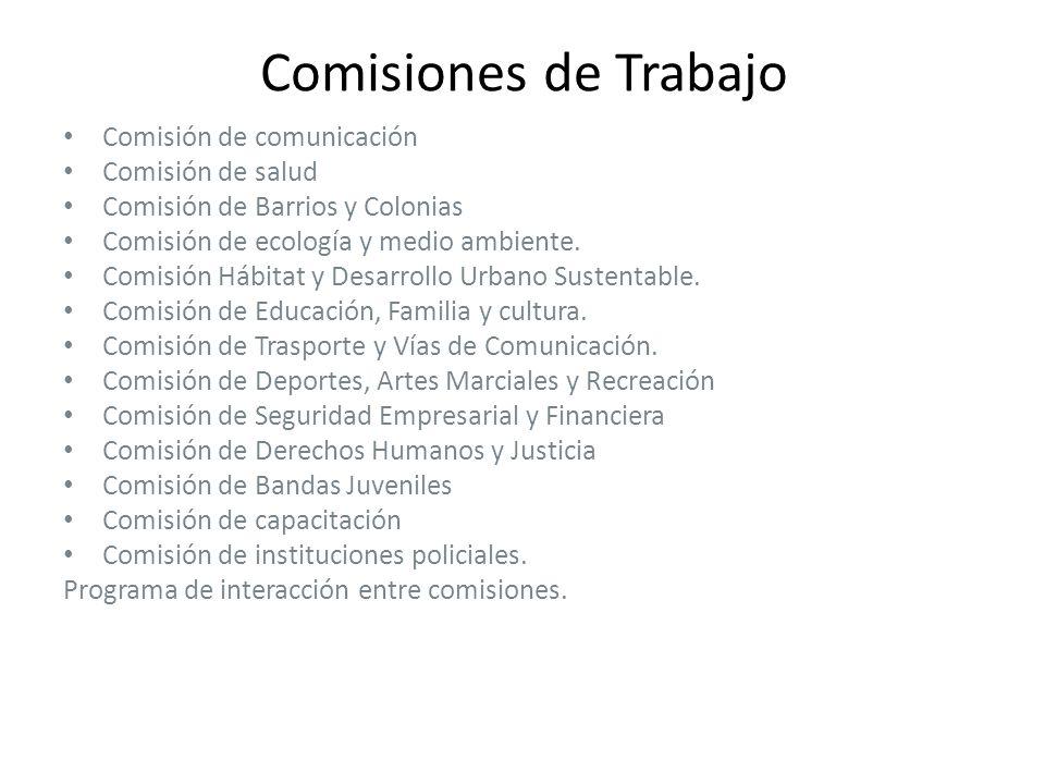Comisiones de Trabajo Comisión de comunicación Comisión de salud