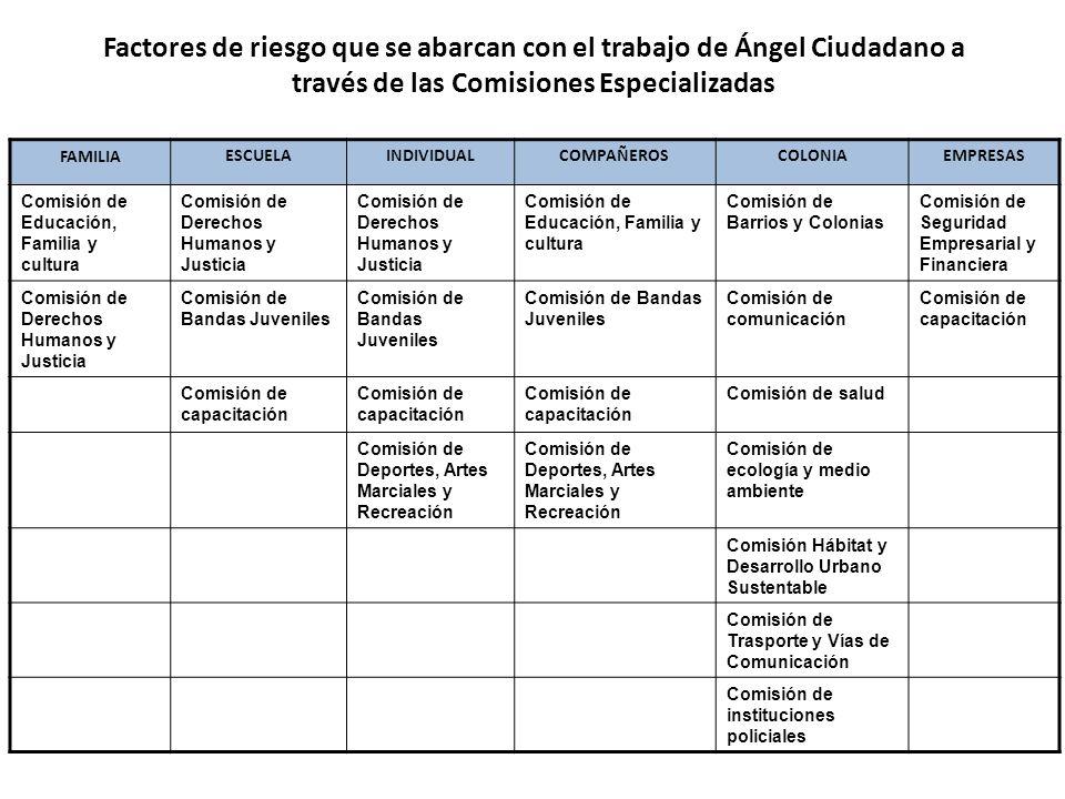 Factores de riesgo que se abarcan con el trabajo de Ángel Ciudadano a través de las Comisiones Especializadas