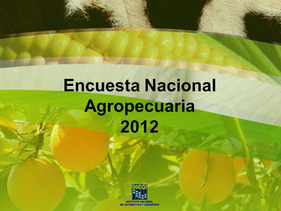 Encuesta Nacional Agropecuaria 2012