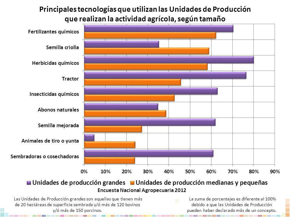 Principales tecnologías que utilizan las Unidades de Producción