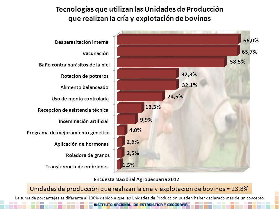 Tecnologías que utilizan las Unidades de Producción