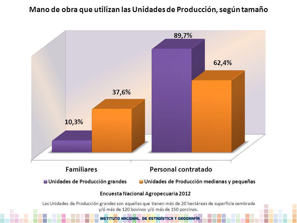 Mano de obra que utilizan las Unidades de Producción, según tamaño