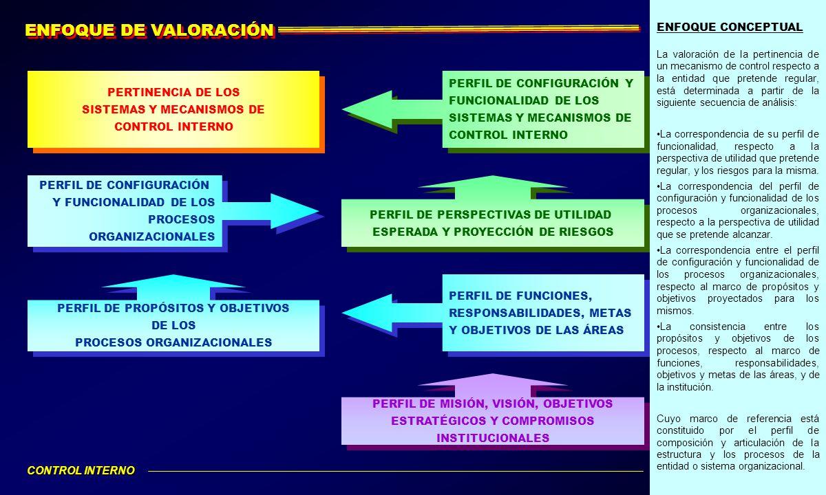 ENFOQUE DE VALORACIÓN ENFOQUE CONCEPTUAL PERTINENCIA DE LOS