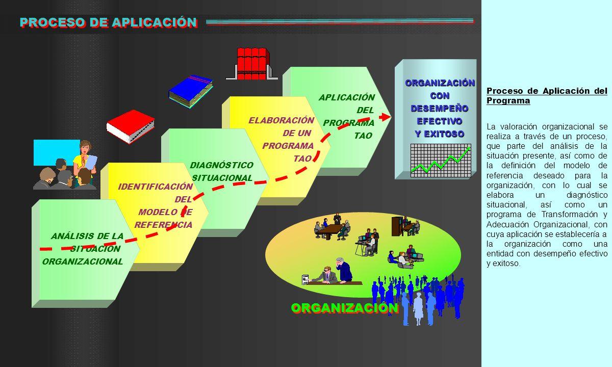 PROCESO DE APLICACIÓN ORGANIZACIÓN Proceso de Aplicación del Programa