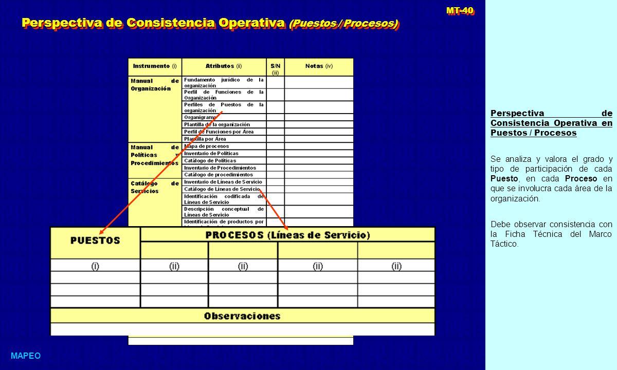 Perspectiva de Consistencia Operativa (Puestos / Procesos)