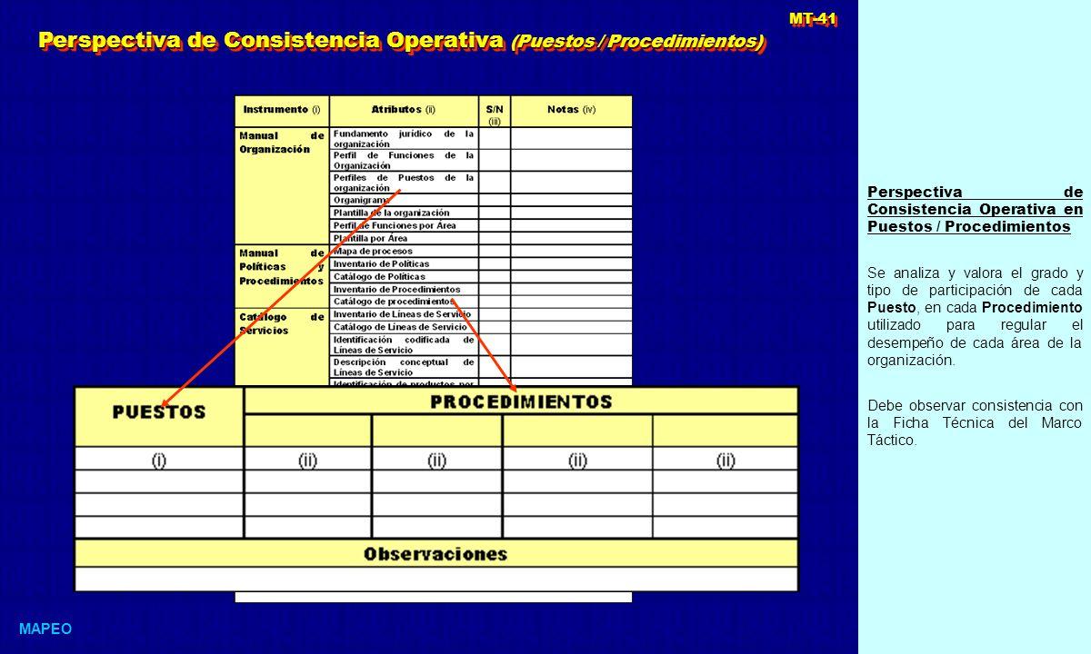 Perspectiva de Consistencia Operativa (Puestos / Procedimientos)