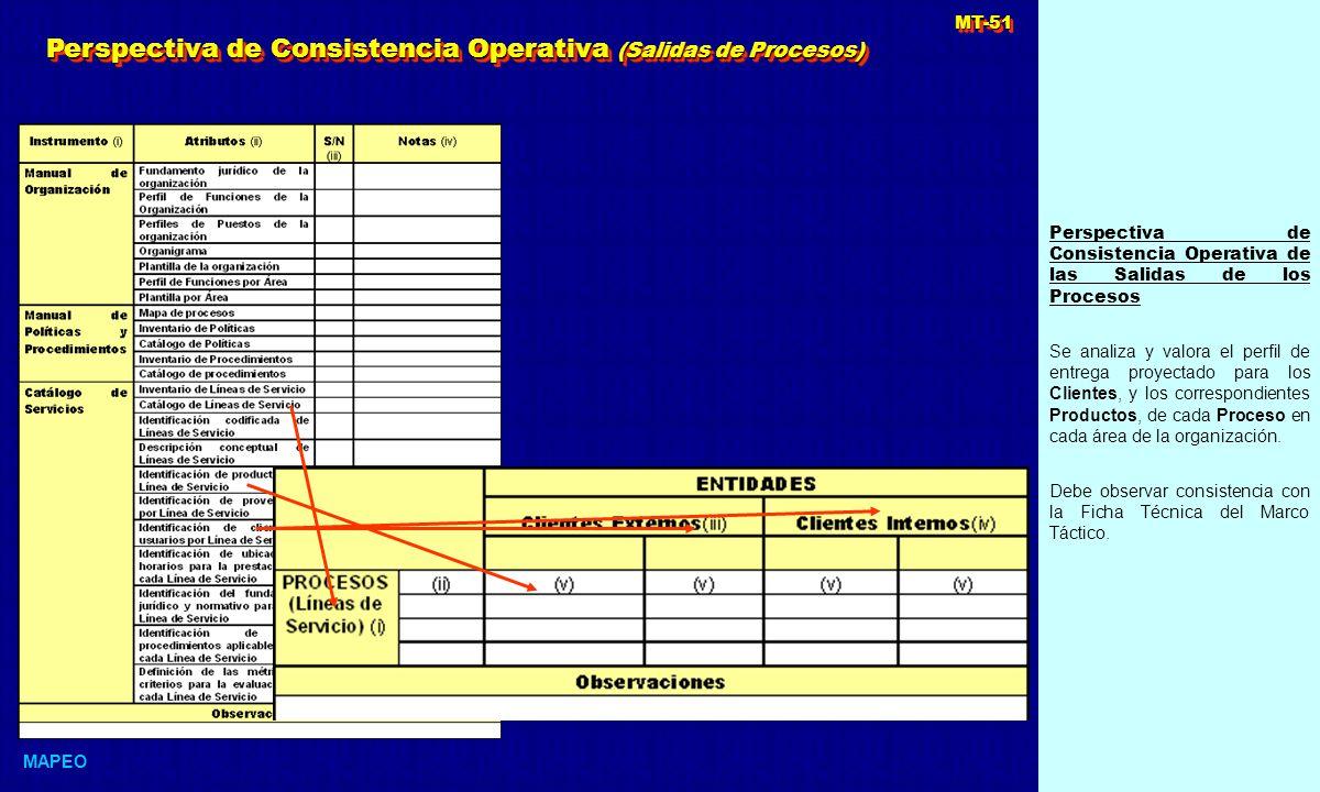 Perspectiva de Consistencia Operativa (Salidas de Procesos)