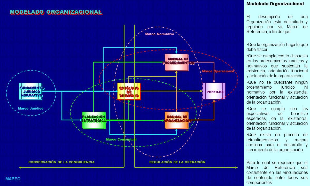 MODELADO ORGANIZACIONAL