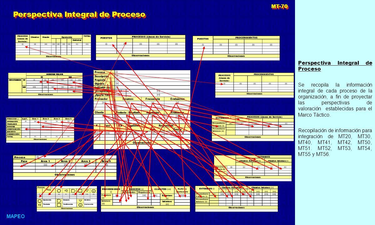 Perspectiva Integral de Proceso