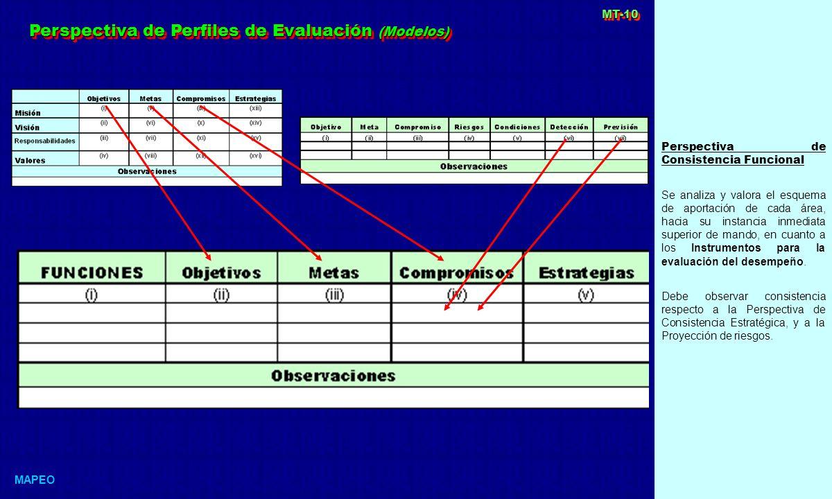 Perspectiva de Perfiles de Evaluación (Modelos)
