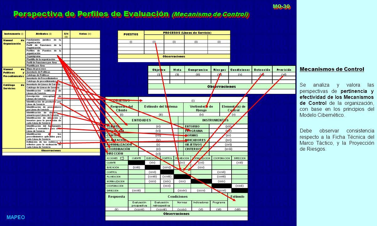 Perspectiva de Perfiles de Evaluación (Mecanismo de Control)