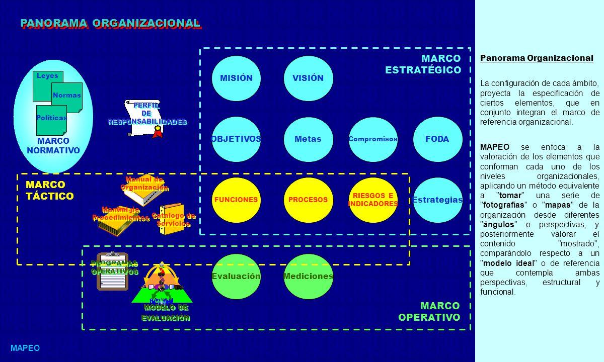 PANORAMA ORGANIZACIONAL
