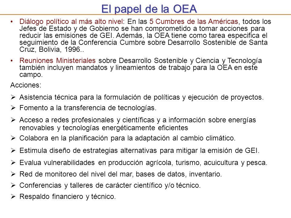 El papel de la OEA