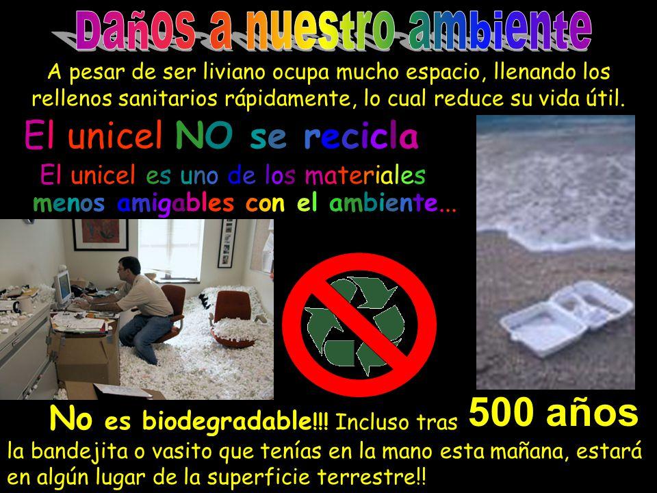 500 años El unicel NO se recicla Daños a nuestro ambiente