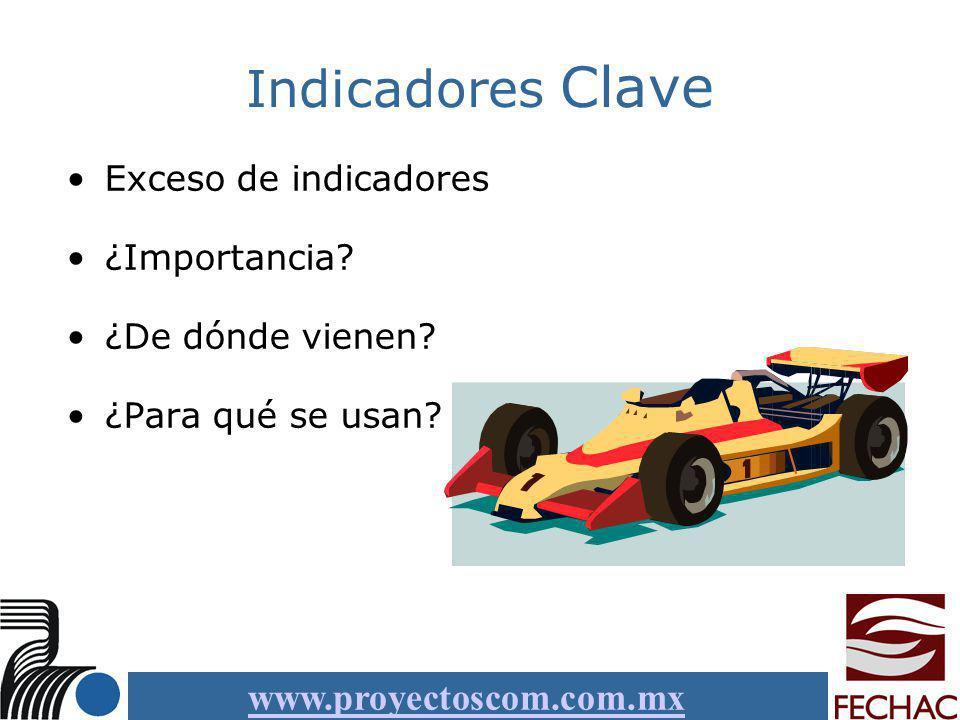 Indicadores Clave Exceso de indicadores ¿Importancia