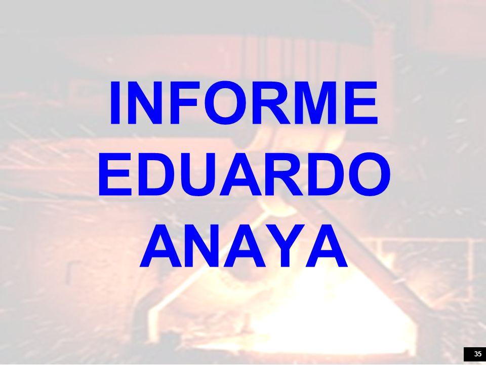 INFORME EDUARDO ANAYA