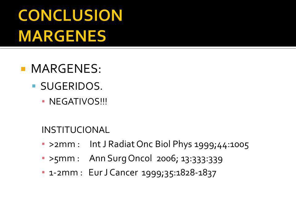 CONCLUSION MARGENES MARGENES: SUGERIDOS. NEGATIVOS!!! INSTITUCIONAL