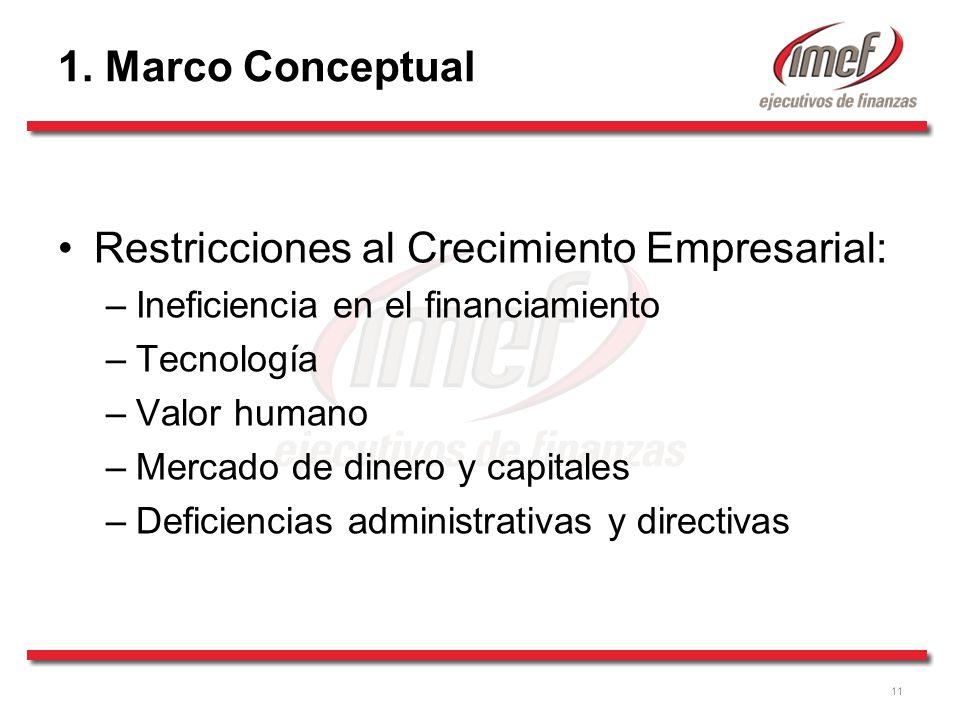 Restricciones al Crecimiento Empresarial: