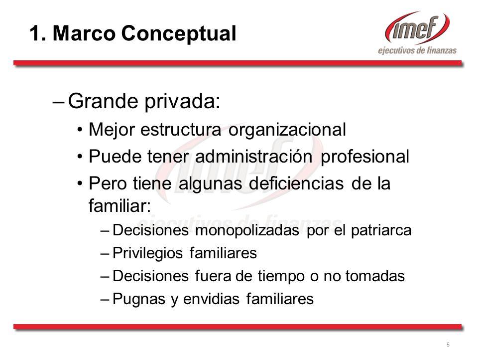1. Marco Conceptual Grande privada: Mejor estructura organizacional