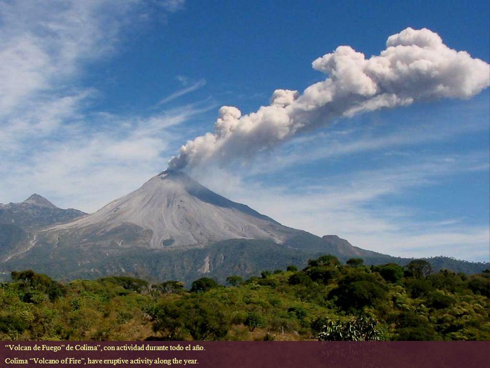 Volcan de Fuego de Colima , con actividad durante todo el año.