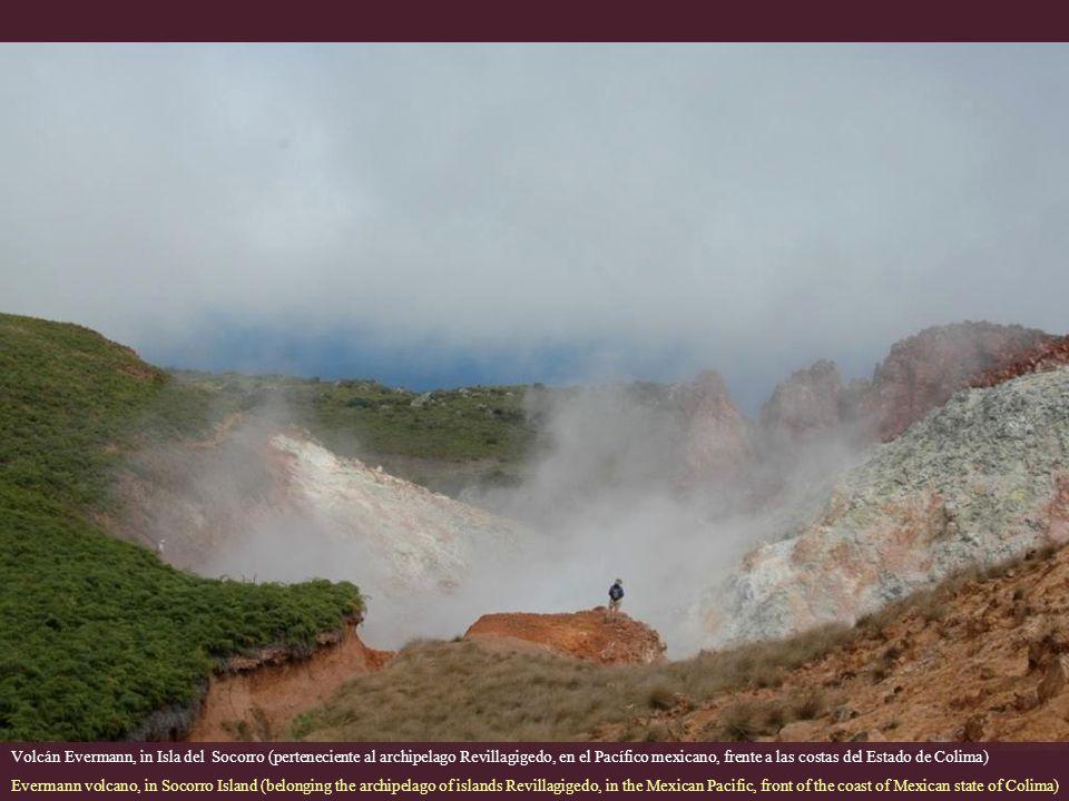 Volcán Evermann, in Isla del Socorro (perteneciente al archipelago Revillagigedo, en el Pacífico mexicano, frente a las costas del Estado de Colima)