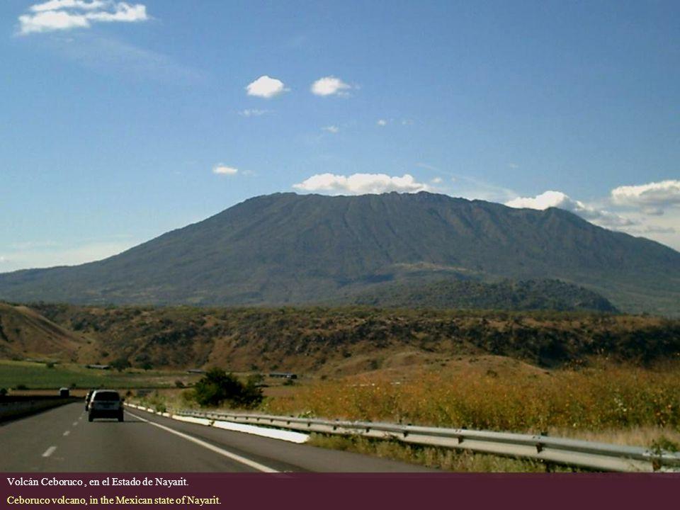 Volcán Ceboruco , en el Estado de Nayarit.