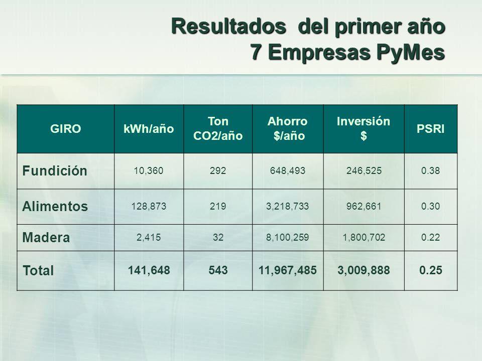 Resultados del primer año 7 Empresas PyMes