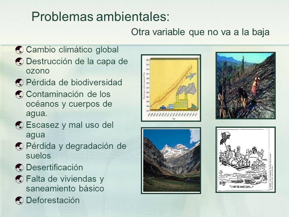 Problemas ambientales: