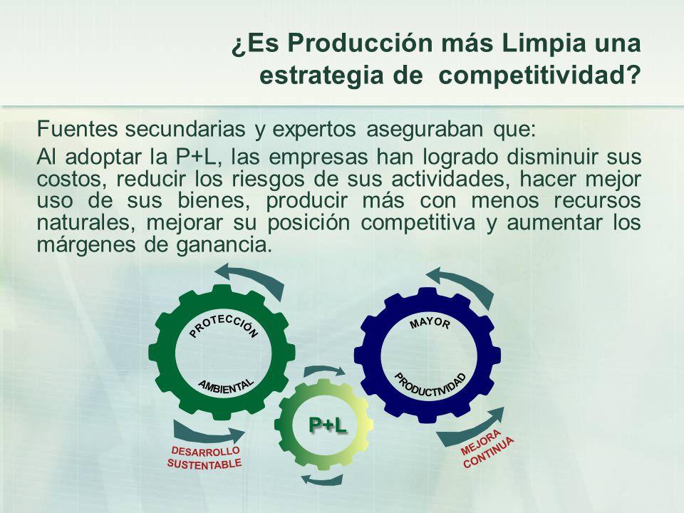 ¿Es Producción más Limpia una estrategia de competitividad