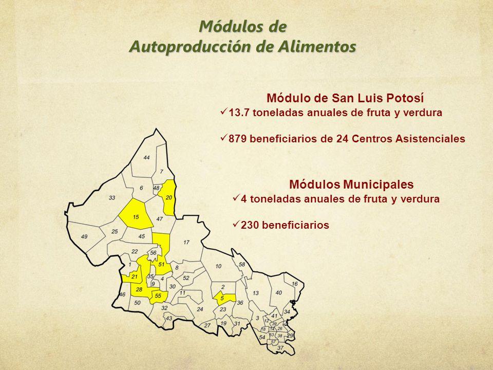 Autoproducción de Alimentos Módulo de San Luis Potosí