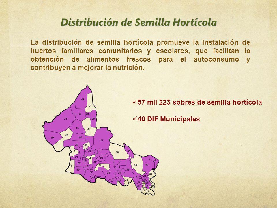 Distribución de Semilla Hortícola