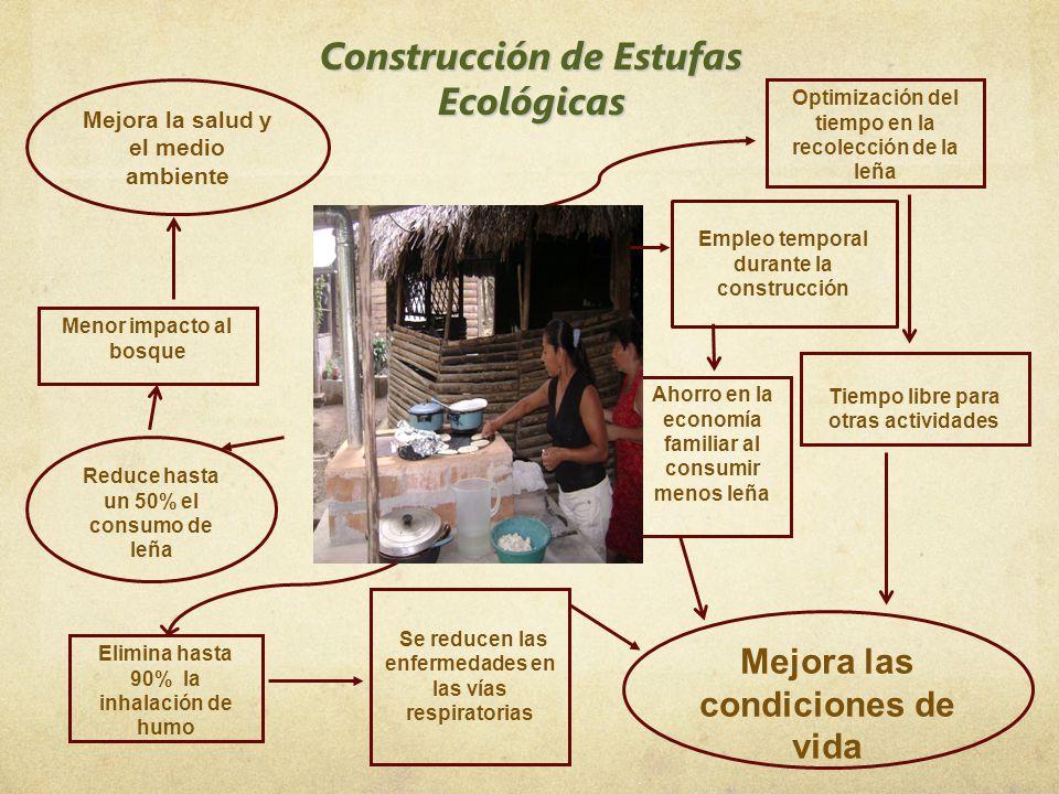 Construcción de Estufas Ecológicas