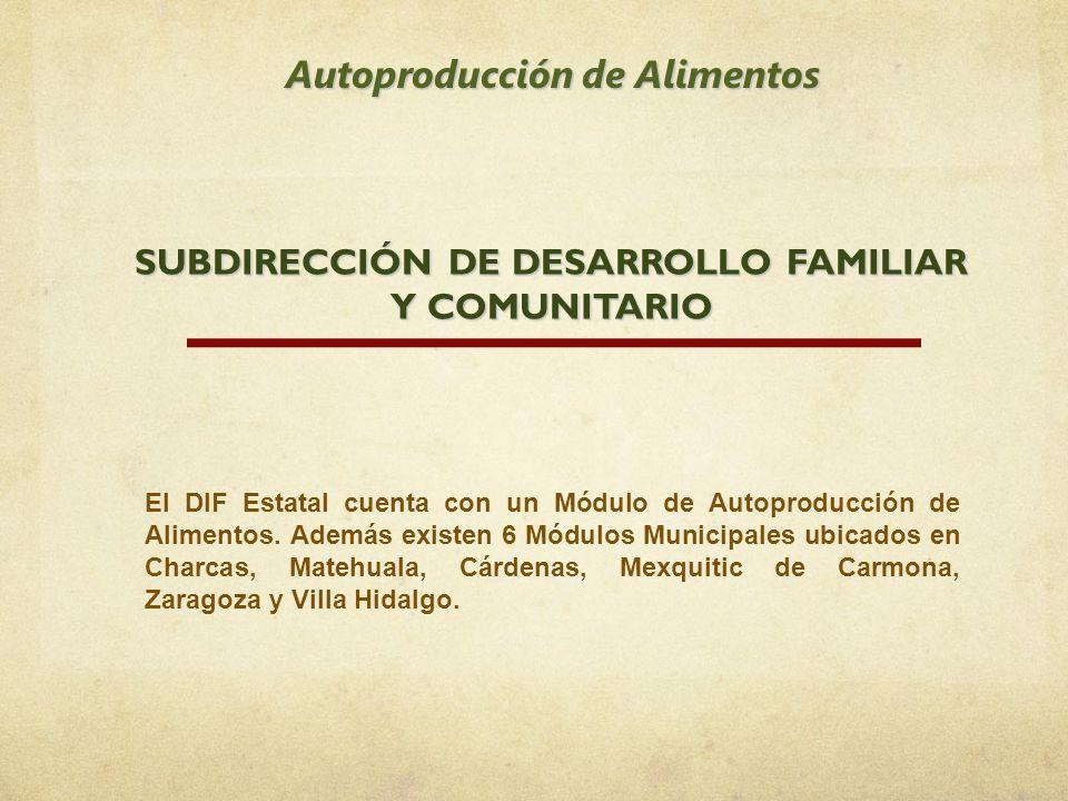 Autoproducción de Alimentos SUBDIRECCIÓN DE DESARROLLO FAMILIAR