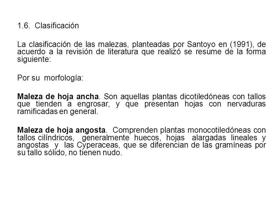 1.6. Clasificación
