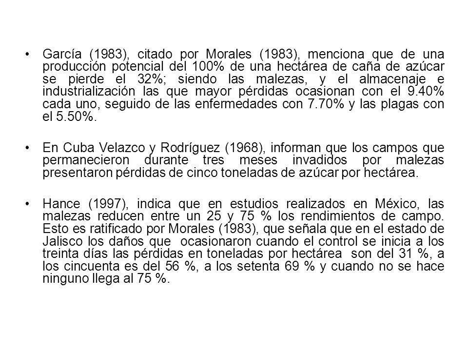 García (1983), citado por Morales (1983), menciona que de una producción potencial del 100% de una hectárea de caña de azúcar se pierde el 32%; siendo las malezas, y el almacenaje e industrialización las que mayor pérdidas ocasionan con el 9.40% cada uno, seguido de las enfermedades con 7.70% y las plagas con el 5.50%.