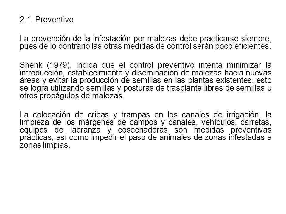 2.1. Preventivo
