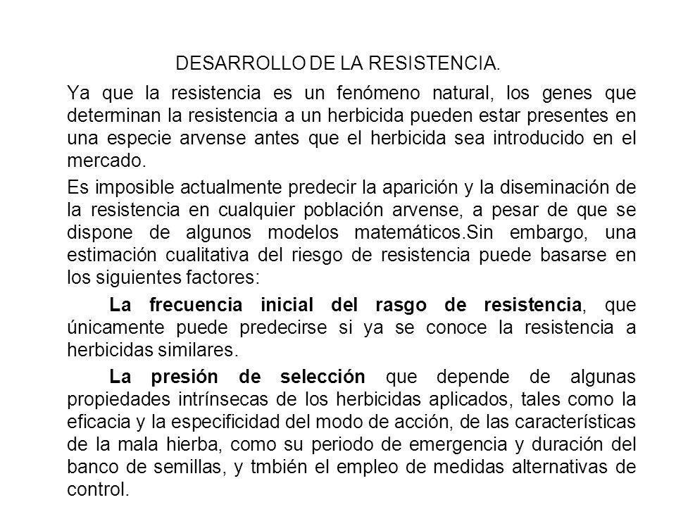 DESARROLLO DE LA RESISTENCIA.