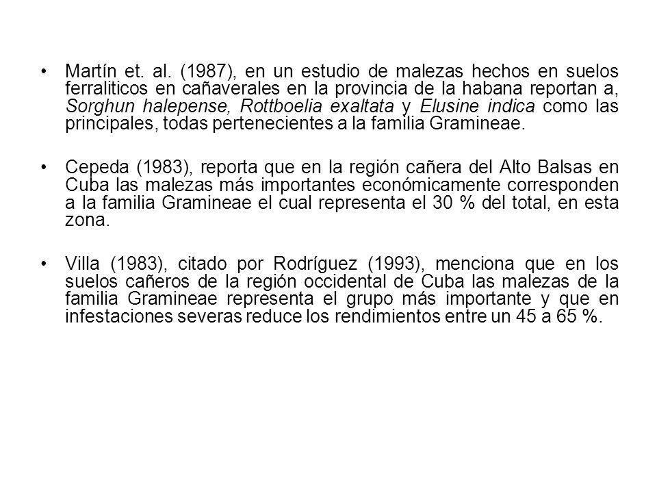 Martín et. al. (1987), en un estudio de malezas hechos en suelos ferraliticos en cañaverales en la provincia de la habana reportan a, Sorghun halepense, Rottboelia exaltata y Elusine indica como las principales, todas pertenecientes a la familia Gramineae.