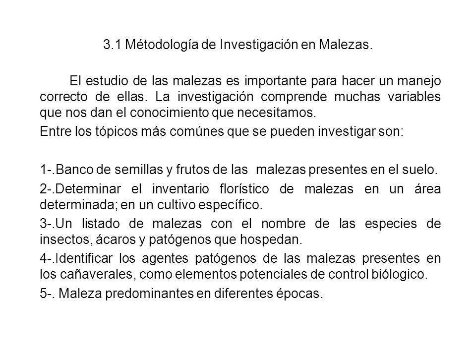 3.1 Métodología de Investigación en Malezas.