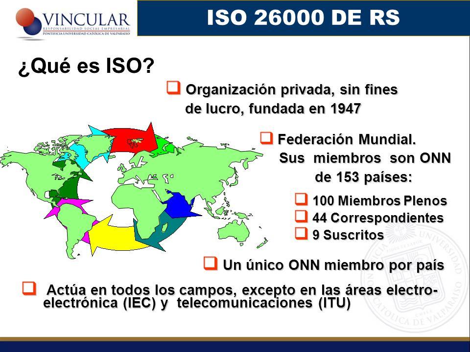 ISO 26000 DE RS ¿Qué es ISO Organización privada, sin fines