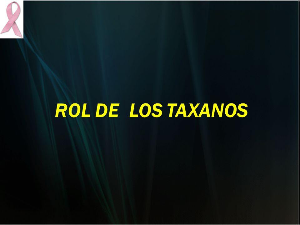 ROL DE LOS TAXANOS