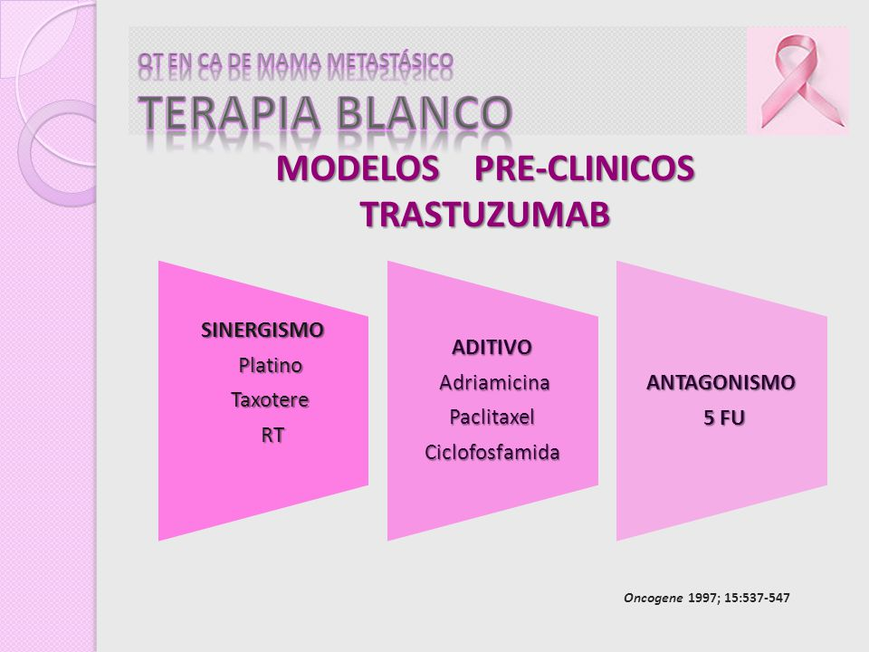 MODELOS PRE-CLINICOS TRASTUZUMAB