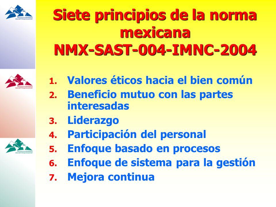 Siete principios de la norma mexicana NMX-SAST-004-IMNC-2004