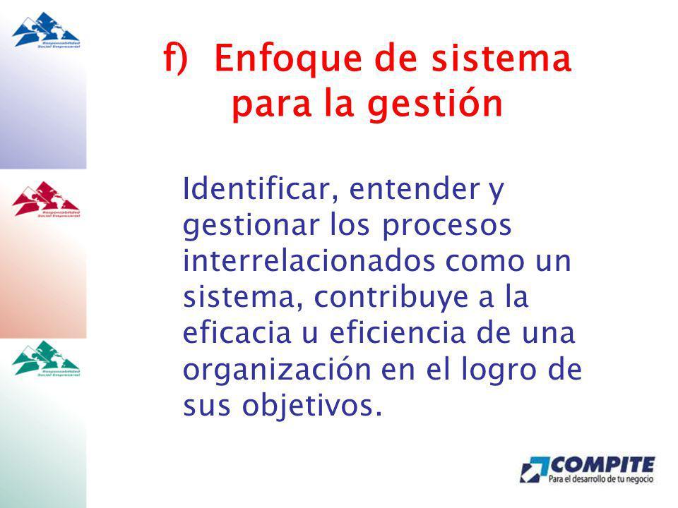 f) Enfoque de sistema para la gestión