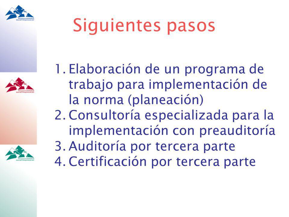 Siguientes pasos Elaboración de un programa de trabajo para implementación de la norma (planeación)