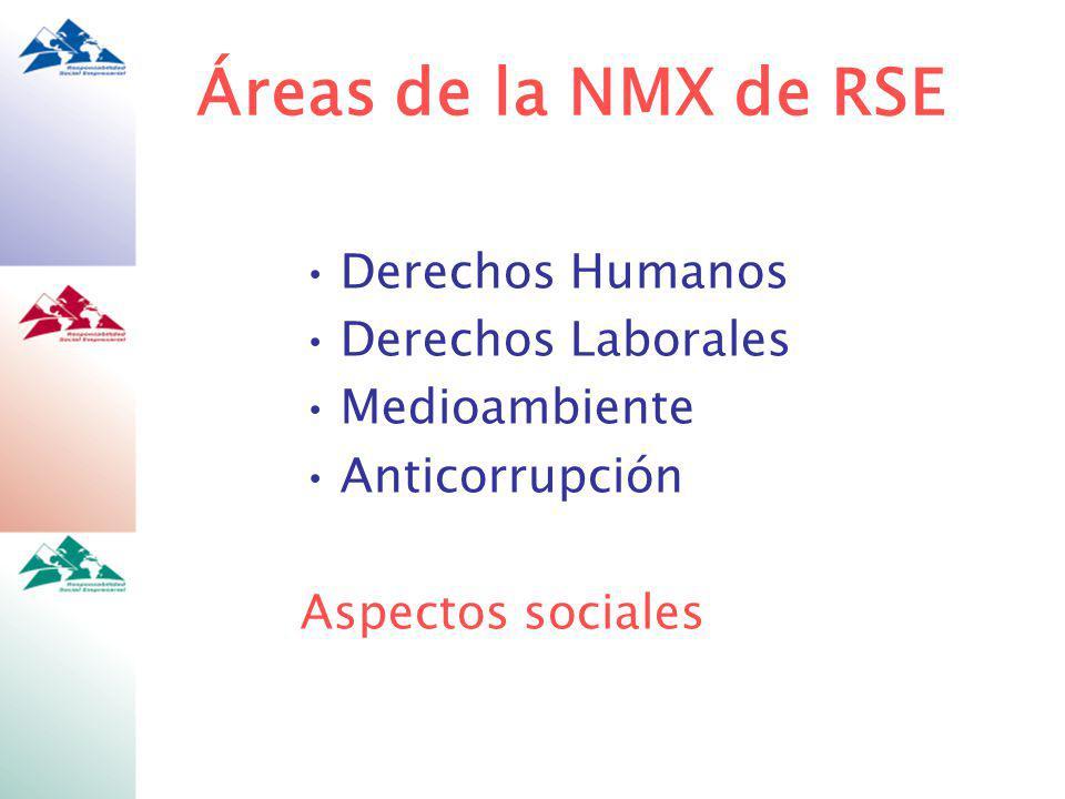 Áreas de la NMX de RSE Derechos Humanos Derechos Laborales
