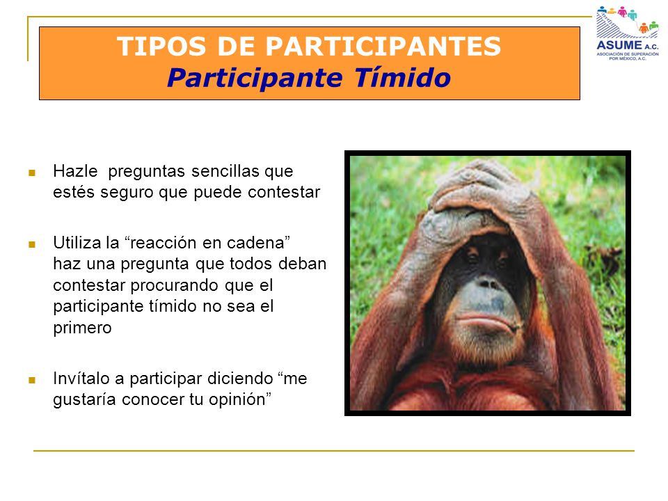 TIPOS DE PARTICIPANTES Participante Tímido