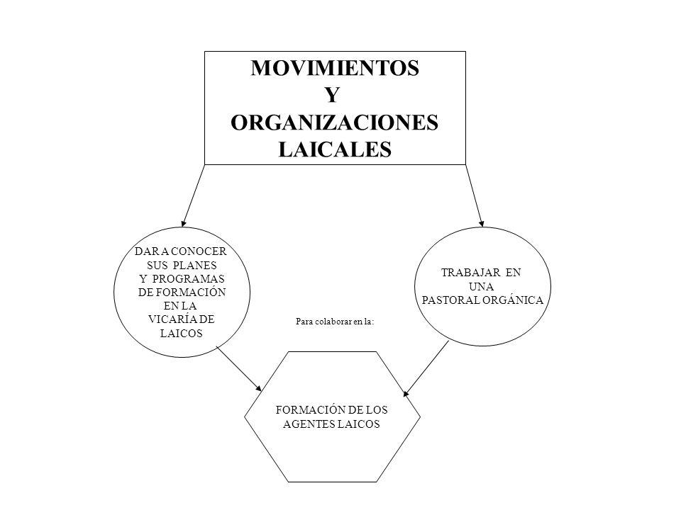 MOVIMIENTOS Y ORGANIZACIONES LAICALES