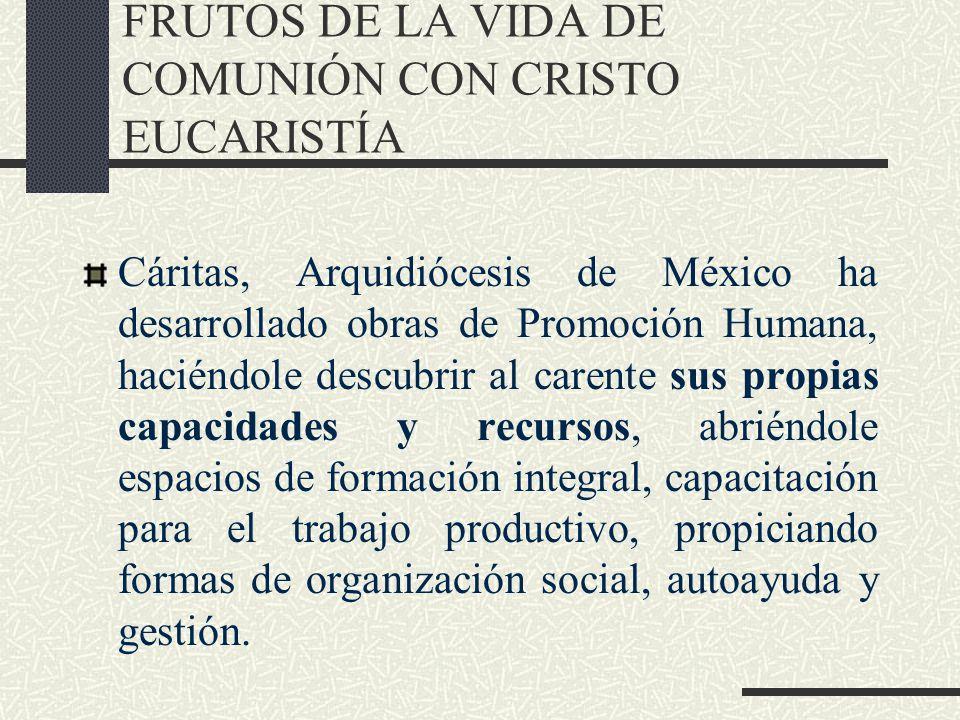 FRUTOS DE LA VIDA DE COMUNIÓN CON CRISTO EUCARISTÍA