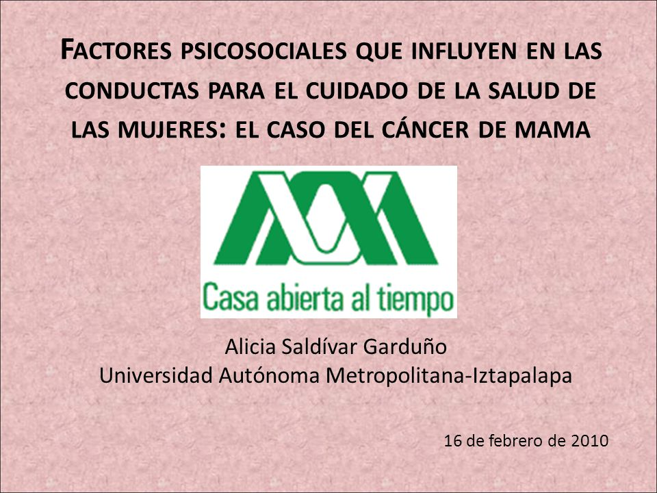 Alicia Saldívar Garduño Universidad Autónoma Metropolitana-Iztapalapa